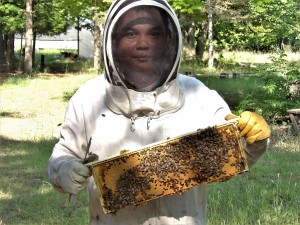 Apiary Assistant Sweet Mountain Farm, LLC